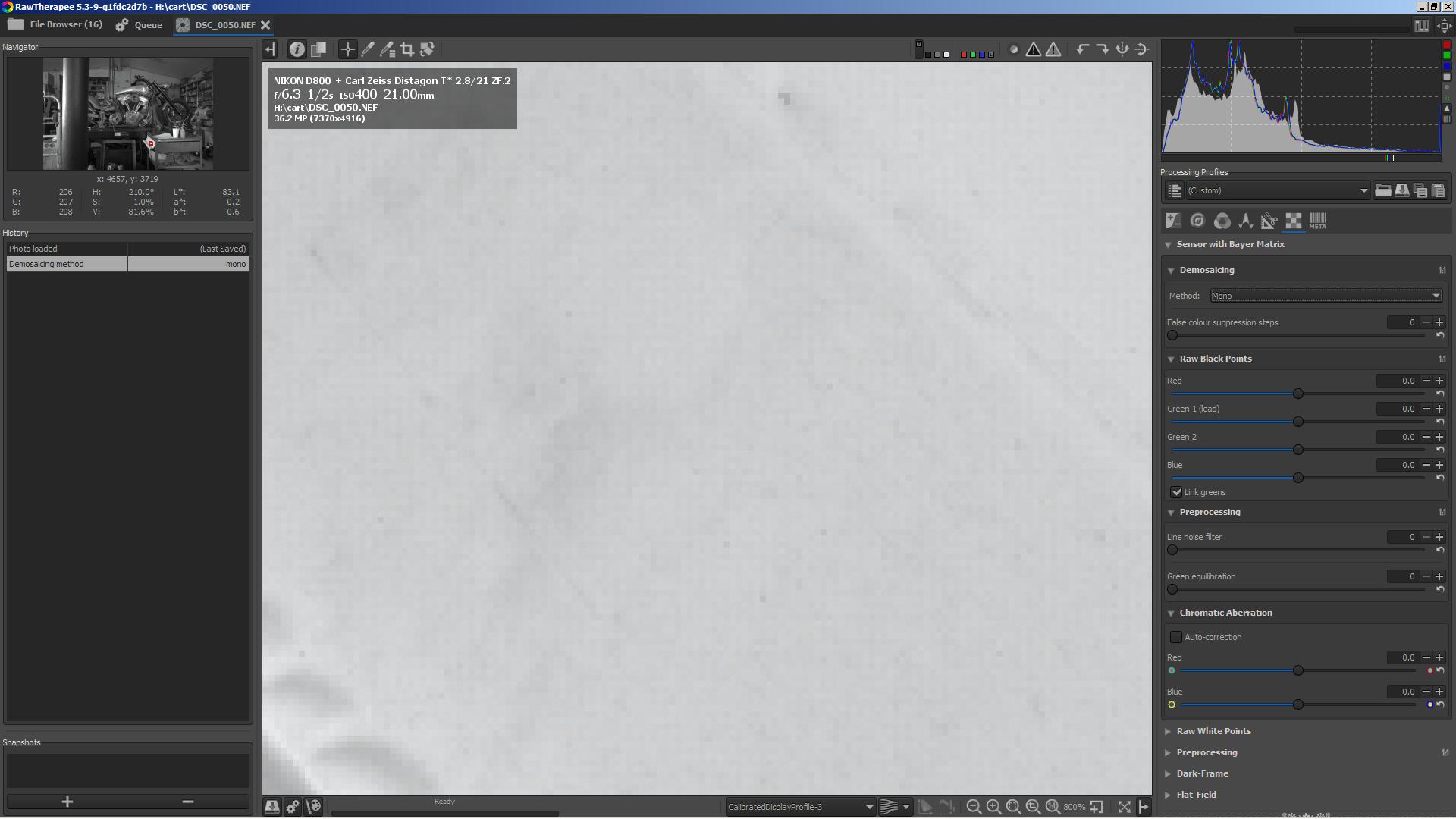 Monochrome Debayer Option with Monochrome Camera - RawTherapee